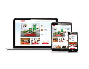 Foodservice website