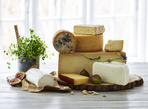 Cheese from Denmark's Best Organic Dairies